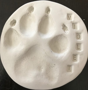 Example of a clay dog paw print.